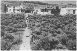 Villa Fiore (Alba Adriatica) anni 50
